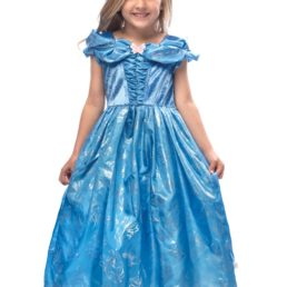 cinderella butterfly dress
