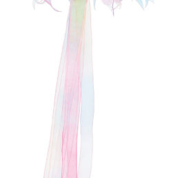 Great Pretenders Rainbow Halo