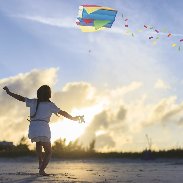 pocket kite flying on the beach