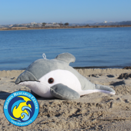 side view of finn the dolphin shore buddies stuffed animal on a beach