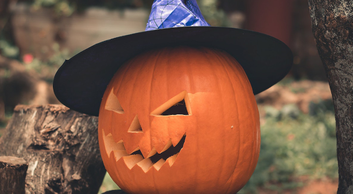 halloween switch witch gift ideas