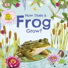 how does a frog grow