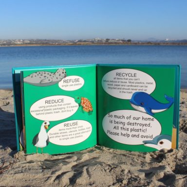 inside the book shore buddies and the plastic ocean