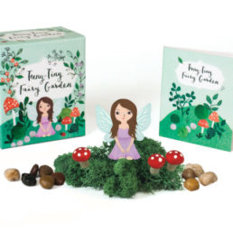 teeny tiny fairy garden